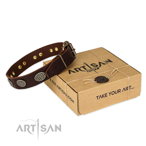 Top notch full grain genuine leather dog collar for everyday walking