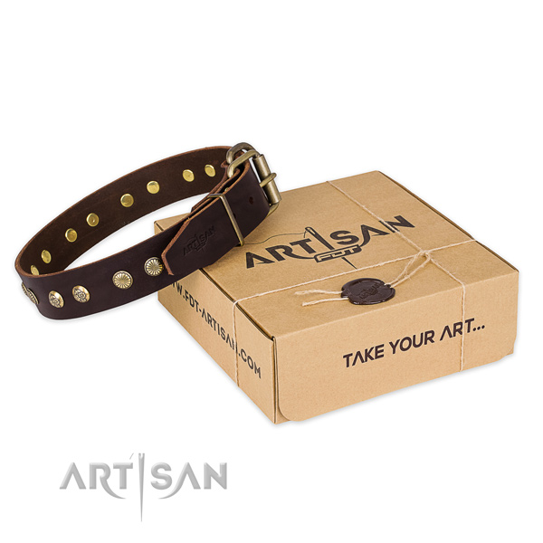 Perfect fit full grain genuine leather dog collar for daily use