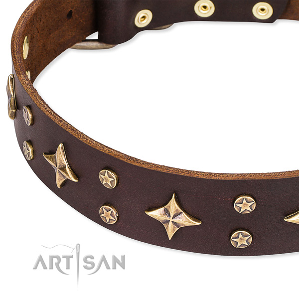 Snugly fitted leather dog collar with resistant to tear and wear durable fittings