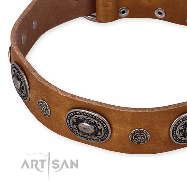 Snugly fitted leather dog collar with extra strong non-rusting set of hardware