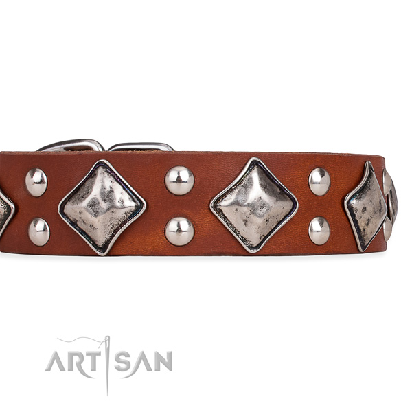 Easy to adjust leather dog collar with extra sturdy brass plated fittings