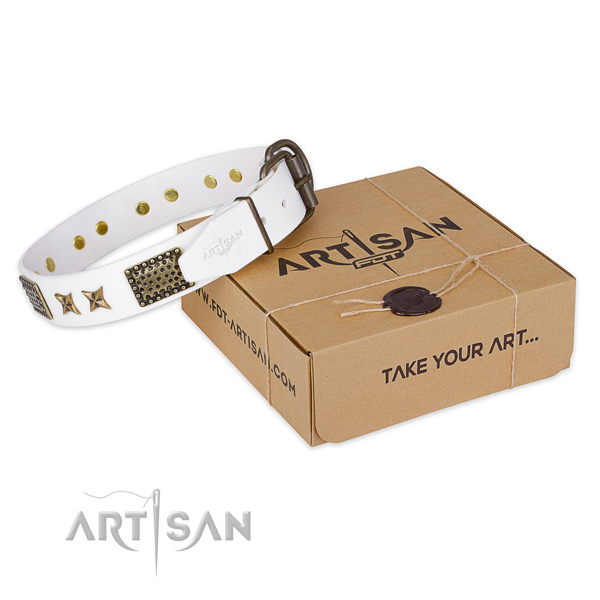 Stylish full grain natural leather dog collar for everyday walking