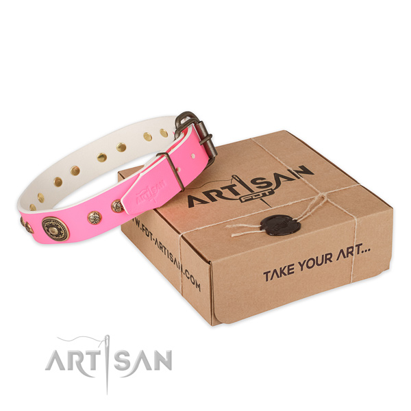 Stylish leather dog collar for walking