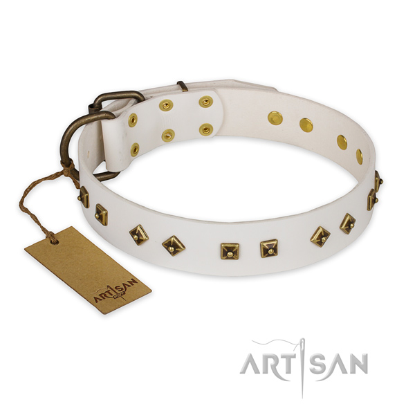 Exceptional design studs on full grain genuine leather dog collar