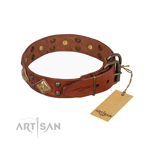 Awesome leather collar for your handsome canine