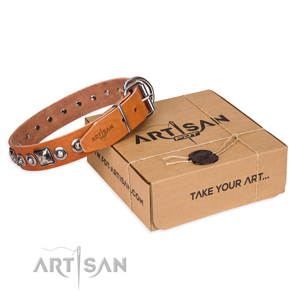 Trendy full grain natural leather dog collar for stylish walking