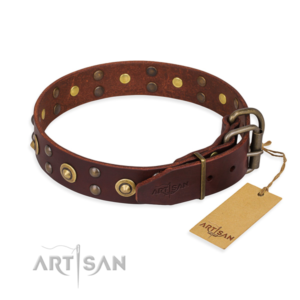 Daily walking full grain natural leather collar with decorations for your dog