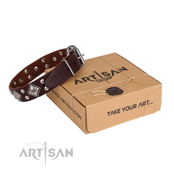 Top notch full grain natural leather dog collar for walking