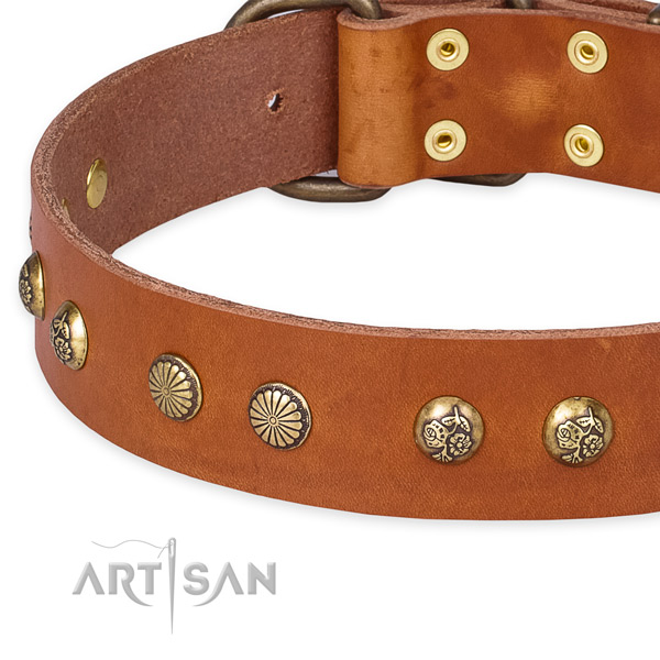 Adjustable leather dog collar with extra sturdy non-rusting buckle and D-ring