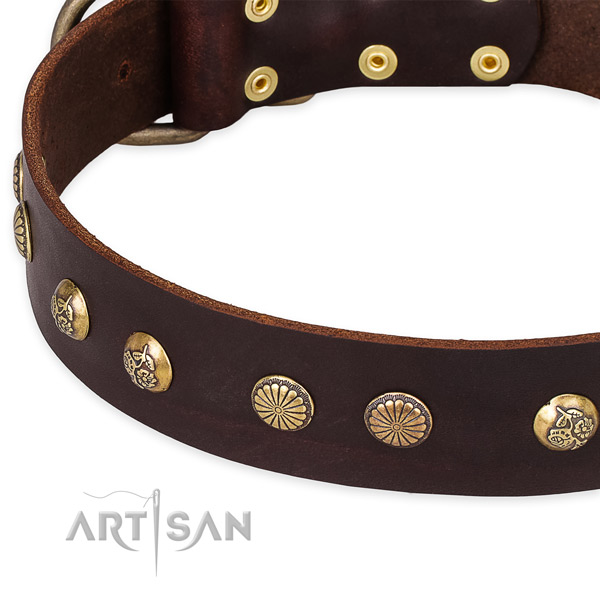 Quick to fasten leather dog collar with almost unbreakable durable hardware