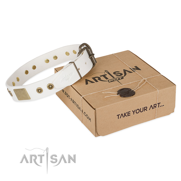 Perfect fit leather dog collar for walking