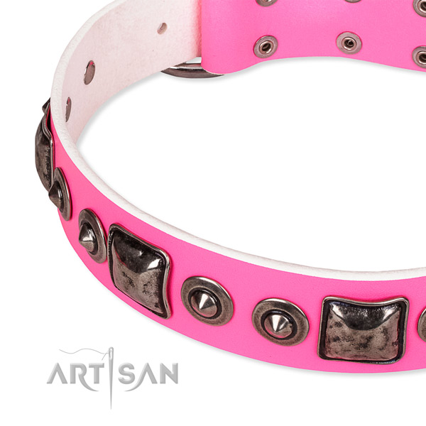 Snugly fitted leather dog collar with extra strong non-rusting buckle
