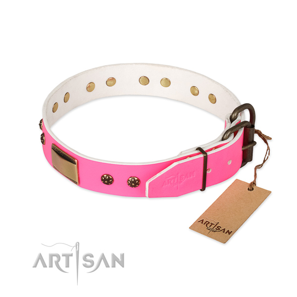 Walking natural genuine leather collar with studs for your four-legged friend