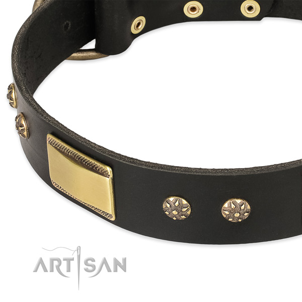 Handy use leather collar with corrosion proof buckle and D-ring