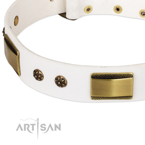 Daily use full grain natural leather collar with reliable buckle and D-ring