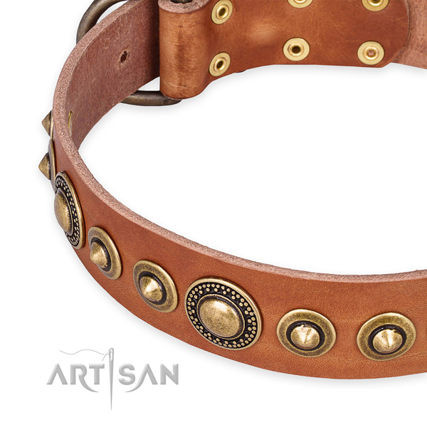 Easy to use leather dog collar with almost unbreakable old bronze-like plated set of hardware