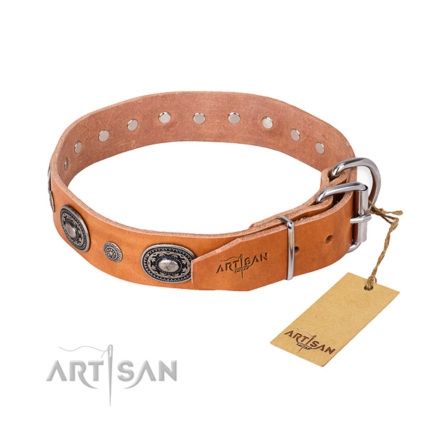 Everyday leather collar for your handsome dog