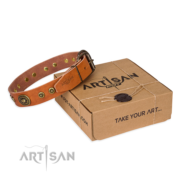 Best quality full grain leather dog collar for stylish walks