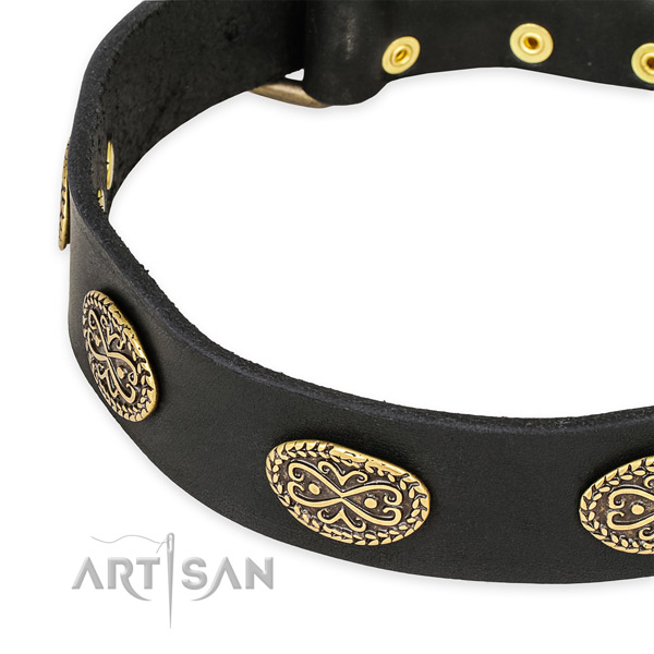 Quick to fasten leather dog collar with resistant to tear and wear brass plated fittings