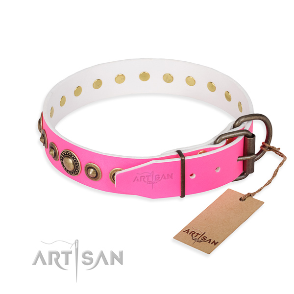 Everyday leather collar for your noble canine