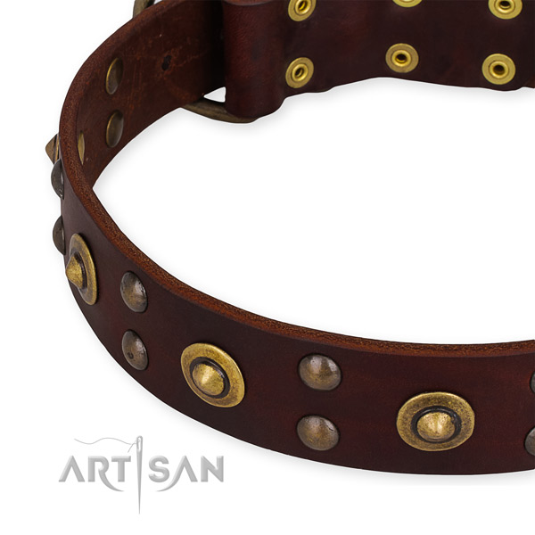 Easy to use leather dog collar with extra strong non-rusting set of hardware