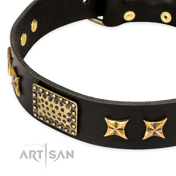 Quick to fasten leather dog collar with resistant to tear and wear non-rusting fittings