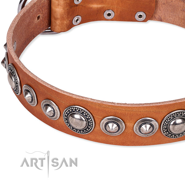 Easy to use leather dog collar with extra sturdy non-rusting set of hardware