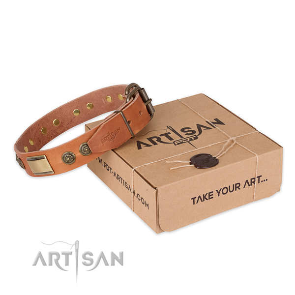 Designer full grain leather dog collar for walking in style