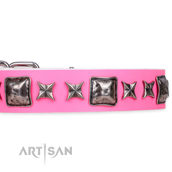 Easy to put on/off leather dog collar with resistant to tear and wear durable set of hardware