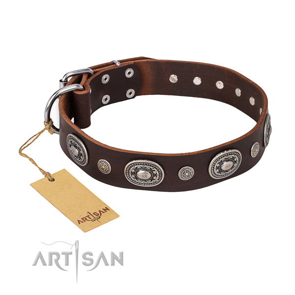 Fashionable design embellishments on natural genuine leather dog collar