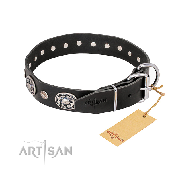 Everyday leather collar for your darling canine