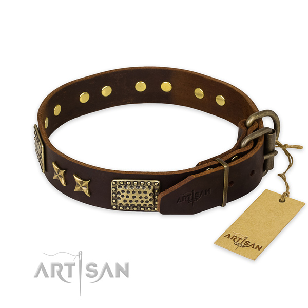 Everyday walking full grain natural leather collar with decorations for your four-legged friend