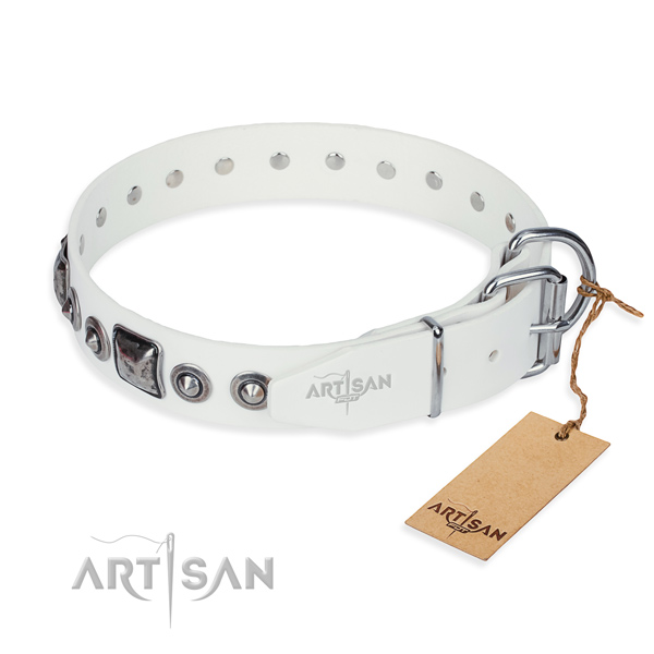 Daily leather collar for your handsome dog