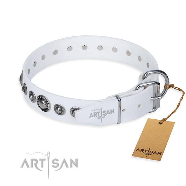 Resistant leather dog collar with riveted hardware