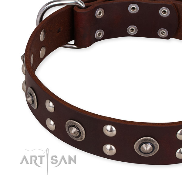 Easy to adjust leather dog collar with resistant to tear and wear chrome plated fittings