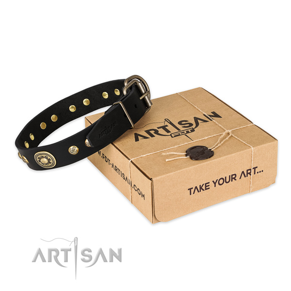Fashionable full grain genuine leather dog collar for stylish walking