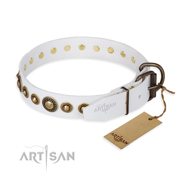 Fashionable leather collar for your beloved pet