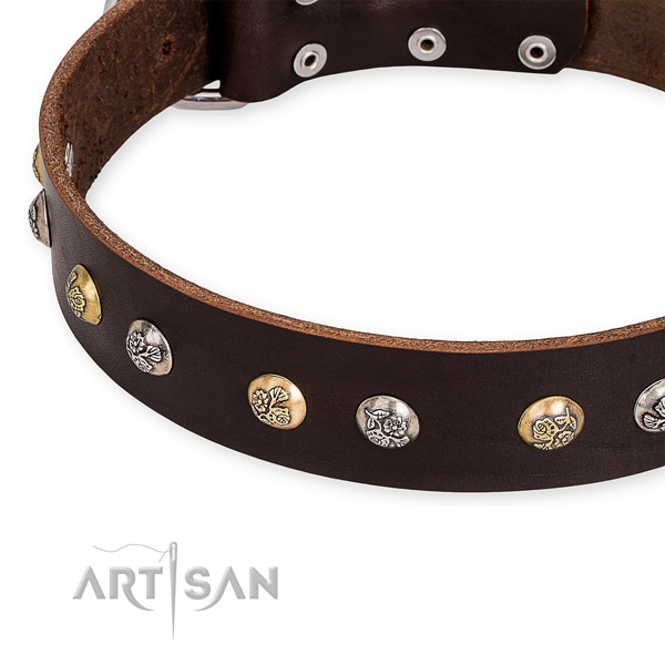Easy to use leather dog collar with resistant durable buckle and D-ring