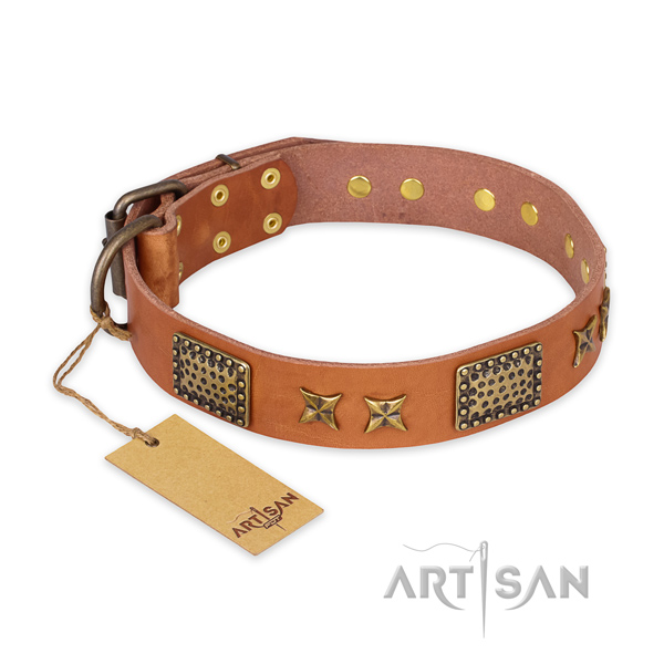 Incredible design embellishments on natural genuine leather dog collar