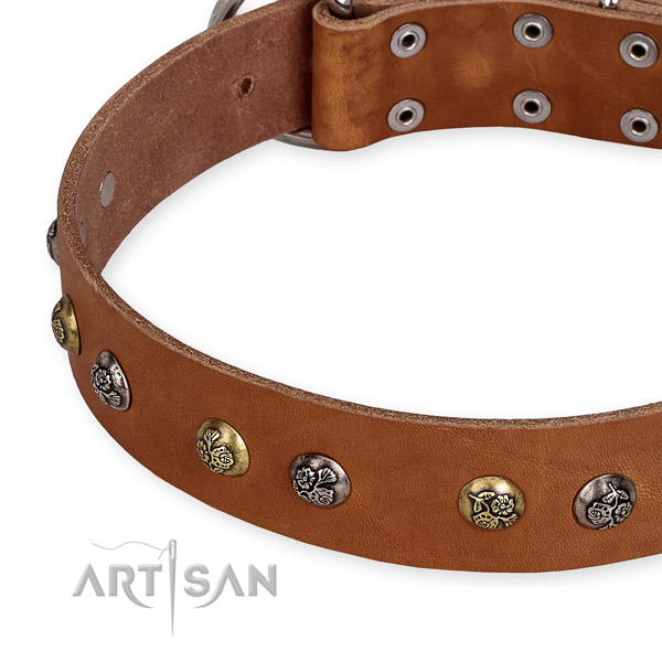 Quick to fasten leather dog collar with almost unbreakable non-rusting buckle