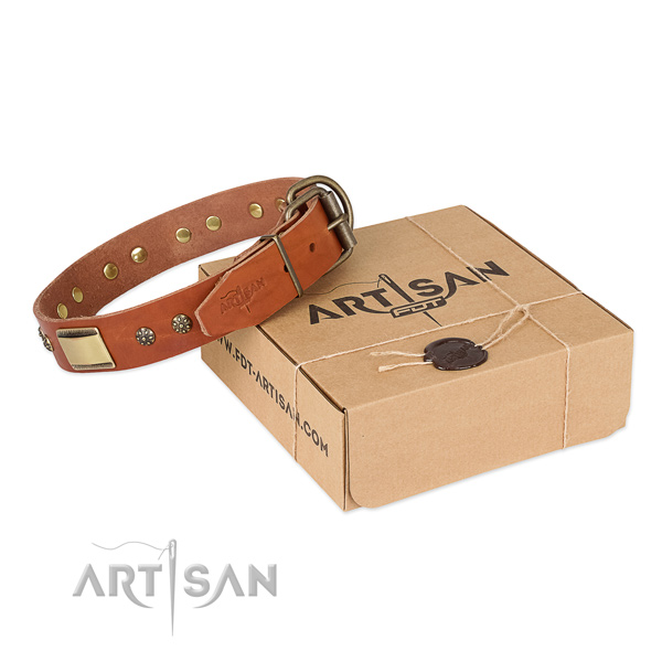 Fine quality natural genuine leather dog collar for everyday use