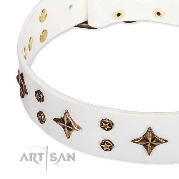 Adjustable leather dog collar with resistant to tear and wear brass plated set of hardware