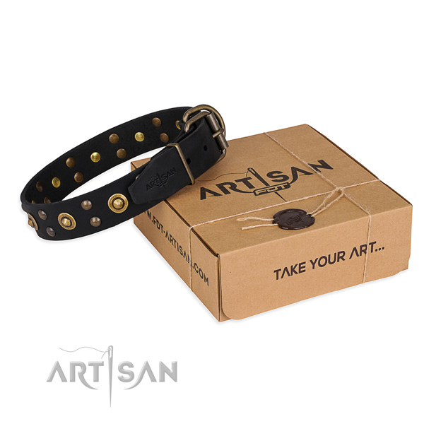 Top notch leather dog collar for daily use