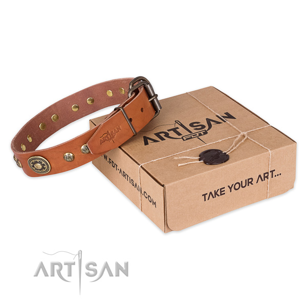 Top notch full grain natural leather dog collar for daily walking