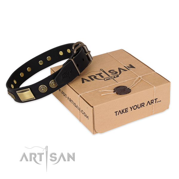 Fashionable full grain genuine leather dog collar for everyday walking