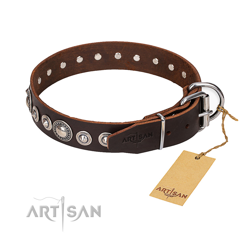 Versatile leather collar for your darling four-legged friend