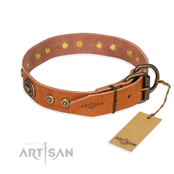 Awesome leather collar for your handsome four-legged friend