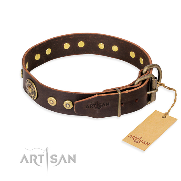 Fashionable leather collar for your noble pet