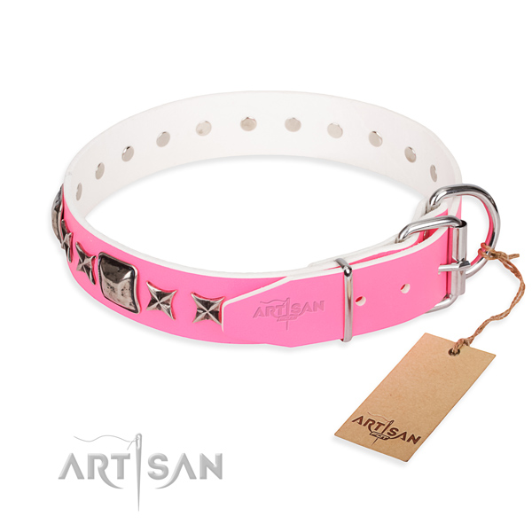 Stylish leather collar for your elegant pet