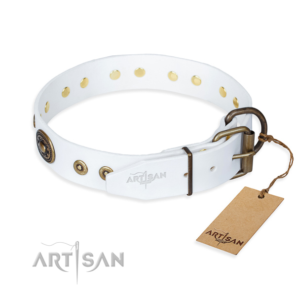 Functional leather collar for your gorgeous canine